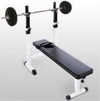 0550 Halterbank Workoutbank Workoutbench plus 20 kg gewichten