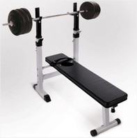 0548 Halterbank Workoutbank Workoutbench plus 60 kg gewichten
